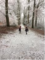 promenade-neige