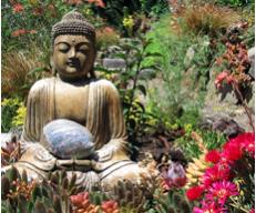 bouddha-fleurs