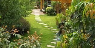 Allée jardin