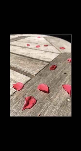 Petales-tombes