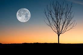 Pleine lune crépuscule