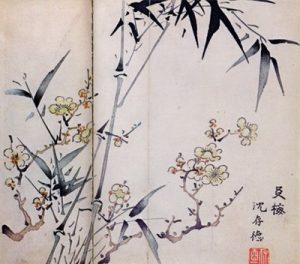 Bambous-cerisiers.jpg