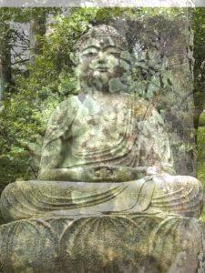 ba assis lichen